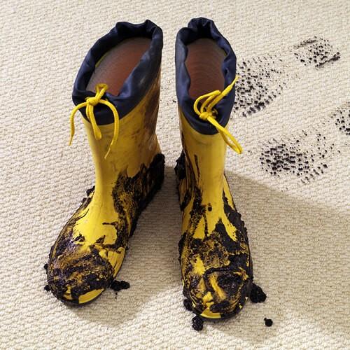 Footprints on Carpet | Lake Forest Flooring