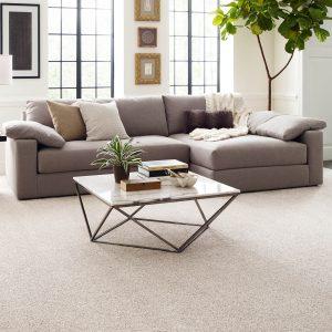 Living room carpet floor | Lake Forest Flooring