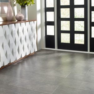 Mineral mix plus lava Offshore Mist Entry Flooring | Lake Forest Flooring