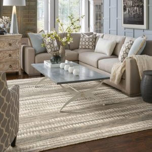 Area rug in living room | Lake Forest Flooring